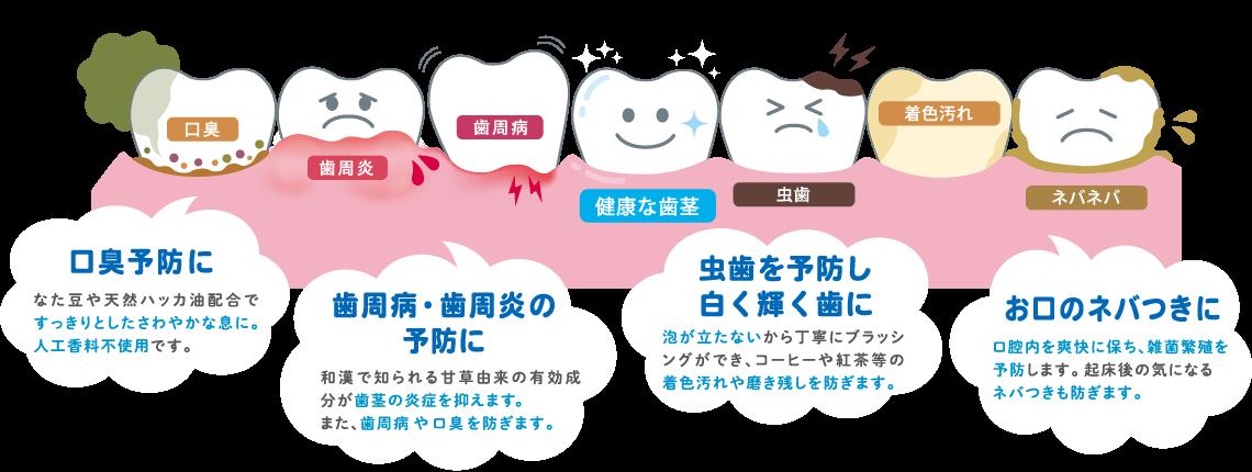 口臭予防に 歯周病・歯周炎の予防に 虫歯を予防し白く輝く歯に お口のネバつきに
